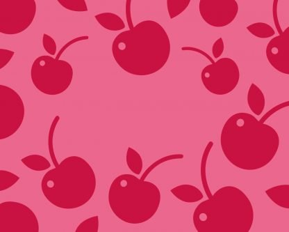 Slab Artisan Fudge - Cherry Flavour Graphic 2
